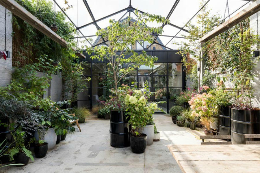 Garden oasis in an English townhouse. Stunning and soulful space designed by Imperfect Interiors in the UK - this East Dulwich Industrial Conversion sings!