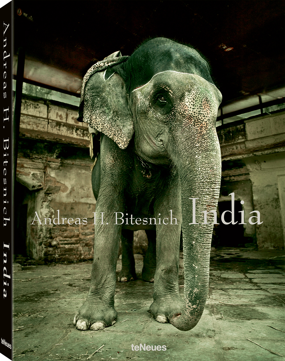 © India by Andreas H. Bitesnich, published by teNeues, $95, www.teneues.com
