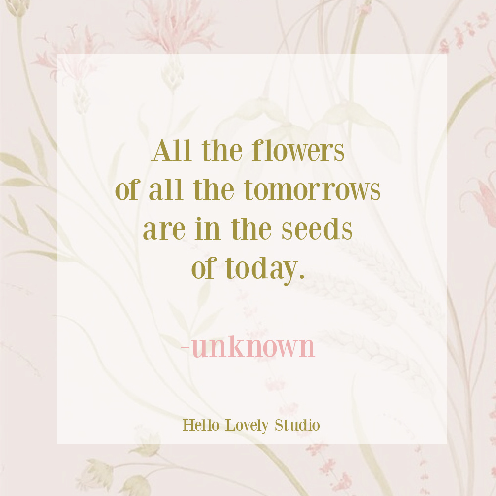 Spring inspirational quote about flowers on Hello Lovely Studio.