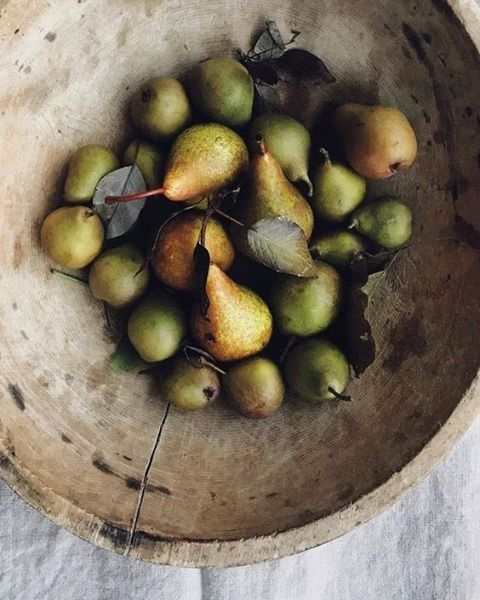 Gorgeous freshly picked pears in a rustic wood bowl - @the_tablescape_co #pears #autumnpears #autumnvibes #slowliving #farmhouseliving
