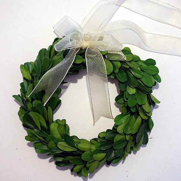 6 inch preserved boxwood wreath for the holidays! #christmaswreath #boxwood