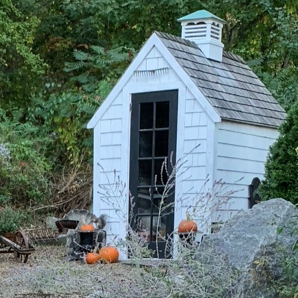 A charming custom backyard potting shed with cupola adds rustic charm to a Massachusetts property with design by Amy Chalmers of Maison Decor. #gardenshed #sheshed #cottage #maisondecor