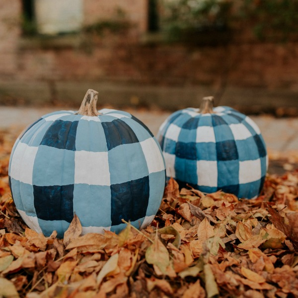 When you want to paint your pumpkin plaid or Frenchy checked to work well with farmhouse and country decor - Kelly in the City. Serene French Farmhouse Fall Decor Photos ahead! #pumpkins #DIY #plaid #buffalochecks #farmhousedecor