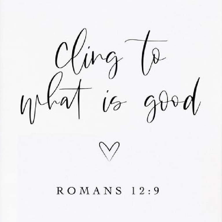 Faith and scripture quote: Cling to what is good - Romans 12:9. #romans #scripture #faithquote #goodnessquotes