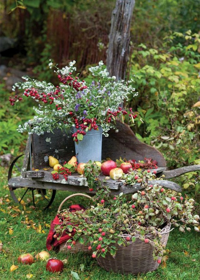 Charming and colorful autumn outdoor vintage country inspiration with wheelbarrow and blooms - The Cottage Journal. #falldecor #autumngarden #wheelbarrow #countrydecor #cottagestyle