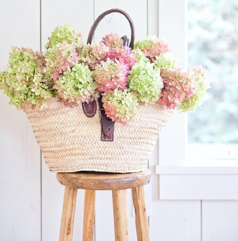 Beautiful French farmhouse moment with market basket full of dried hydrangea in fall - A Rosy Note. #fallflorals #driedhyrdrangea #frenchfarmhouse #marketbasket