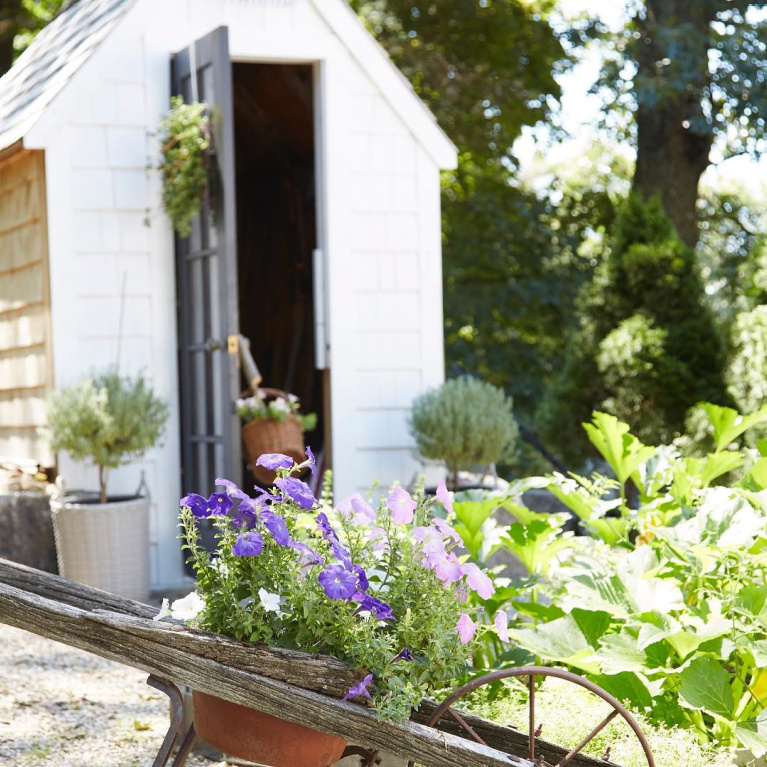 Amy Chalmer's charming backyard shed and garden with wheelbarrow featured in Nora Murphys Country House. #gardens #countrygarden #frenchcountry #gardenshed