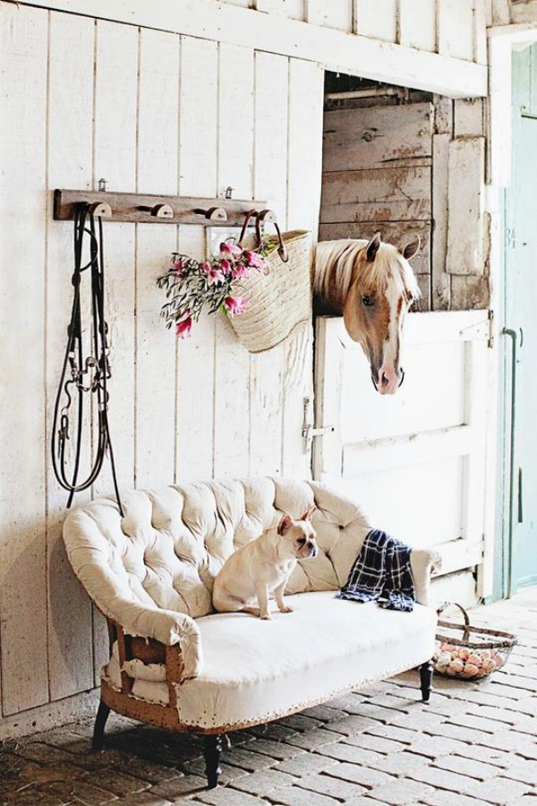 Rustic white stable with horse, French bulldog, and dreamy whites style!