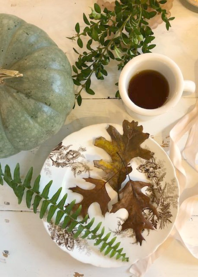serene fall color palette decor