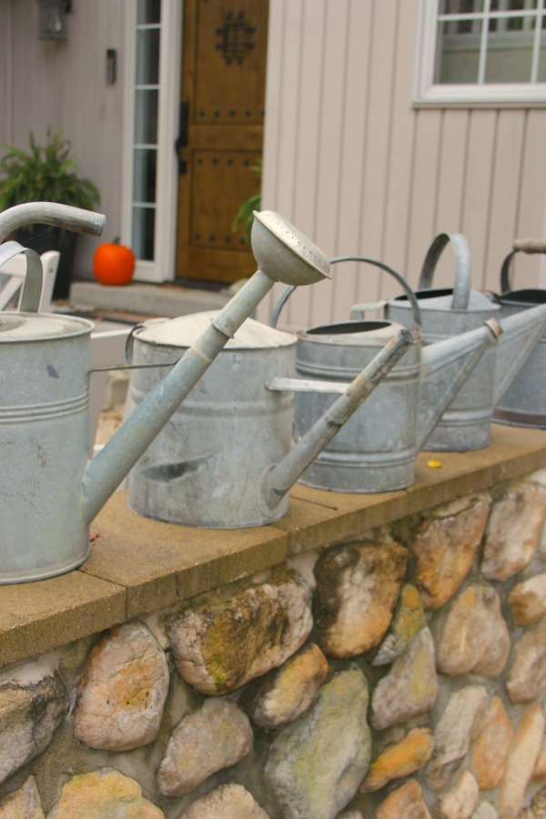 Vintage metal watering cans lined up on the stone wall of our French inspired courtyard - Hello Lovely Studio.