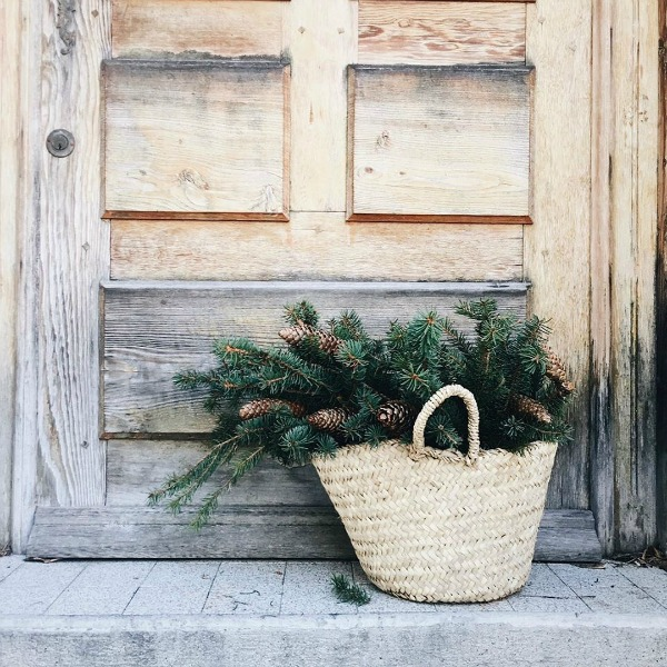 Rustic French farmhouse Christmas vignette with market basket filled with greenery and pinecones at a scrubbed wood door. Vivi et Margot. #frenchchristmas #frenchfarmhouse #frenchcountrychristmas #vivietmargot