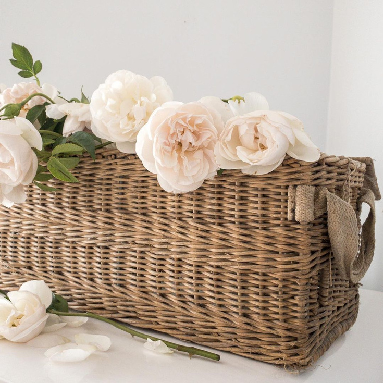 Antique French lidded basket filled with gorgeous pale pink Francis Meilland roses - My Petite Maison