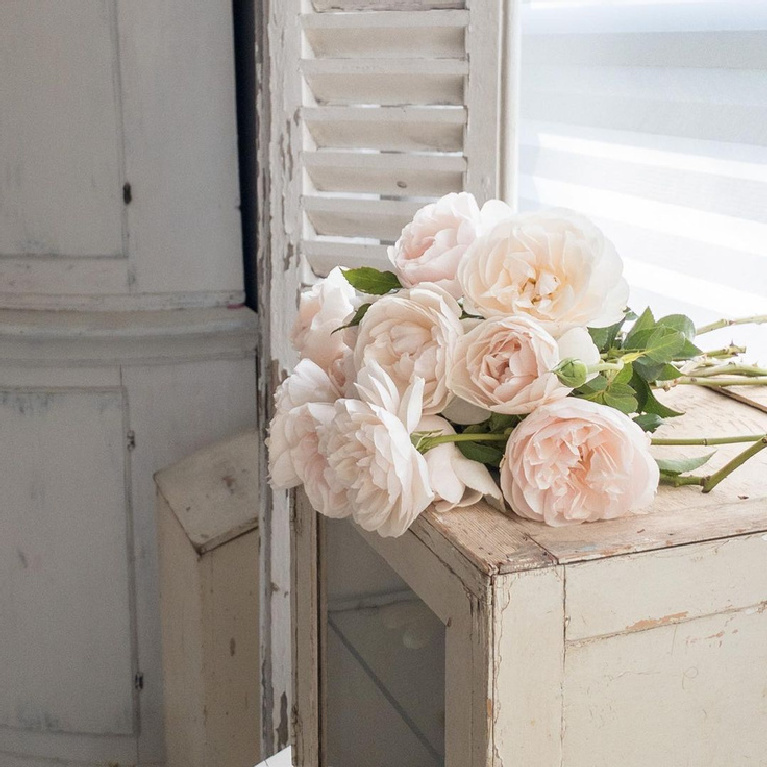 Nordic French white antiques and vintage decor with pale blush Francis Meilland roses - My Petite Maison. #nordicfrench #frenchnordic #vintagestyle #francismeilland #swedishcountry #countrydecor