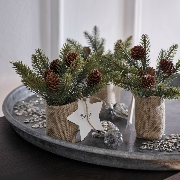 PInecone mini Christmas trees - The White Company London