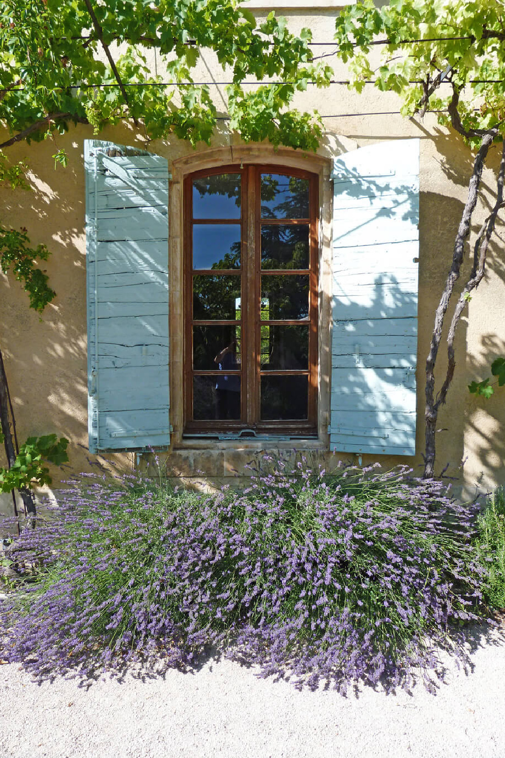 French farmhouse exterior with beautiful green shutters. Come score ideas for a Timeless and Tranquil European Country Inspired Look. #europeancountry #interiordesign #frenchcountry