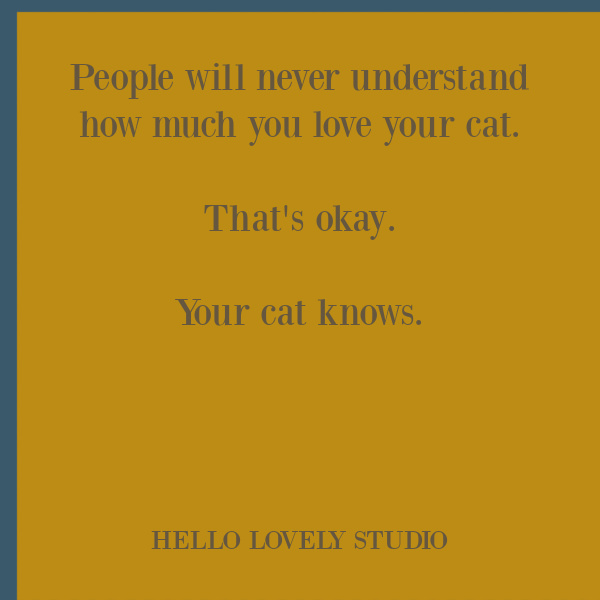 Sweet cat quote for cat lovers. #catquotes #catlovers #catlady