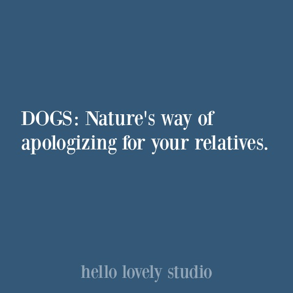 Funny quote about dogs. #hellolovelystudio #dogquote #quotes #humor
