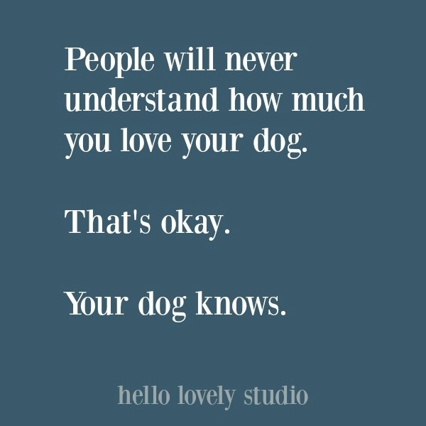 Dog quote about how much you love him or her. #dogquotes #quotes