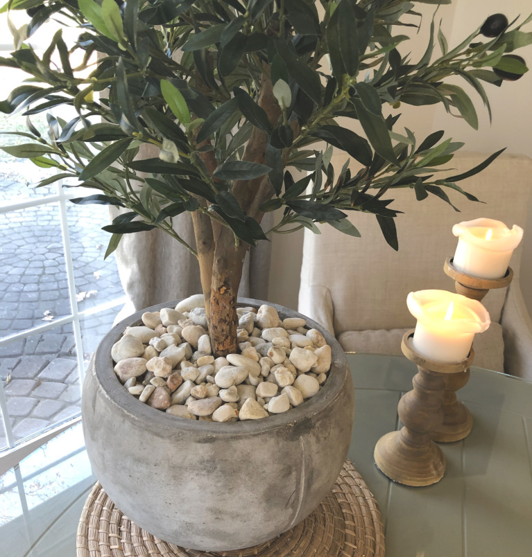 Detail of my olive tree in rustic European inspired pot with white stones - Hello Lovely Studio.