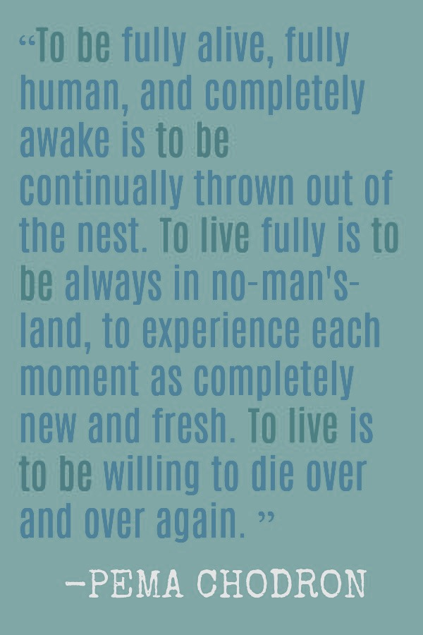 Inspirational quote and spiritual words from Pema Chodron on being fully alive - Hello Lovely Studio. #inspirationalquote #pemachodron #spirituality #faith