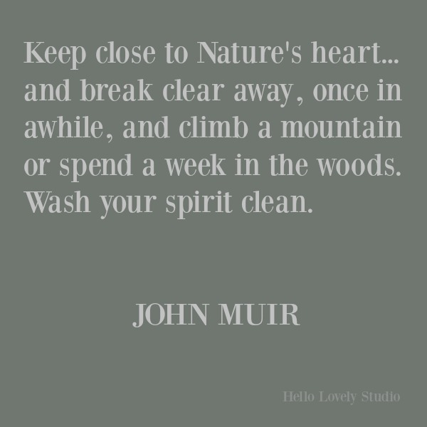 Inspirational quote about nature's beauty and wisdom by John Muir on Hello Lovely Studio. #inspirationalquote #quotes #johnmuir #naturequotes
