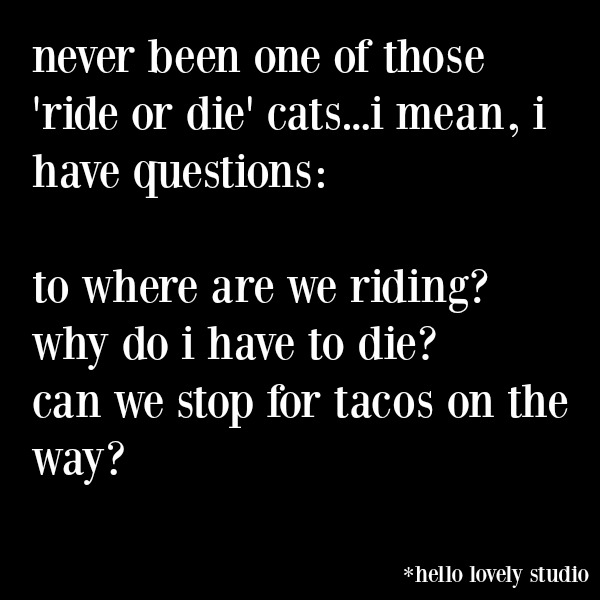 Funny quote and humor to make you smile on Hello Lovely Studio. #funnyquote #humorquote #midlifehumor