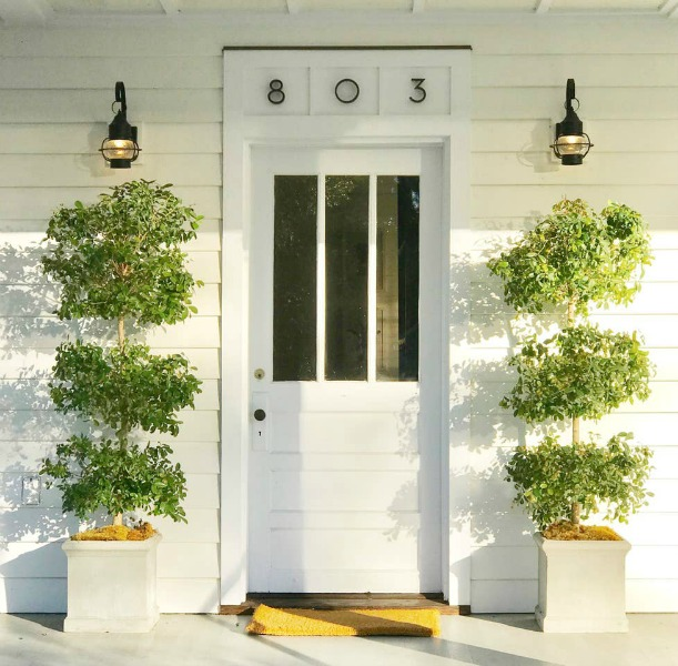 Charming 1880s white cottage front door flanked by simple lanterns and tall topiaries. #frontdoor #cottagestyle #frontporch #housedesign
