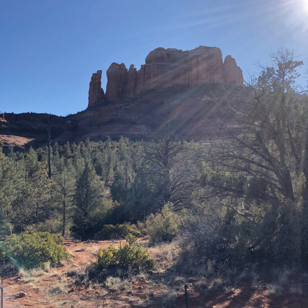 Cathedral Rock Park in Sedona, Arizona - Hello Lovely Studio.