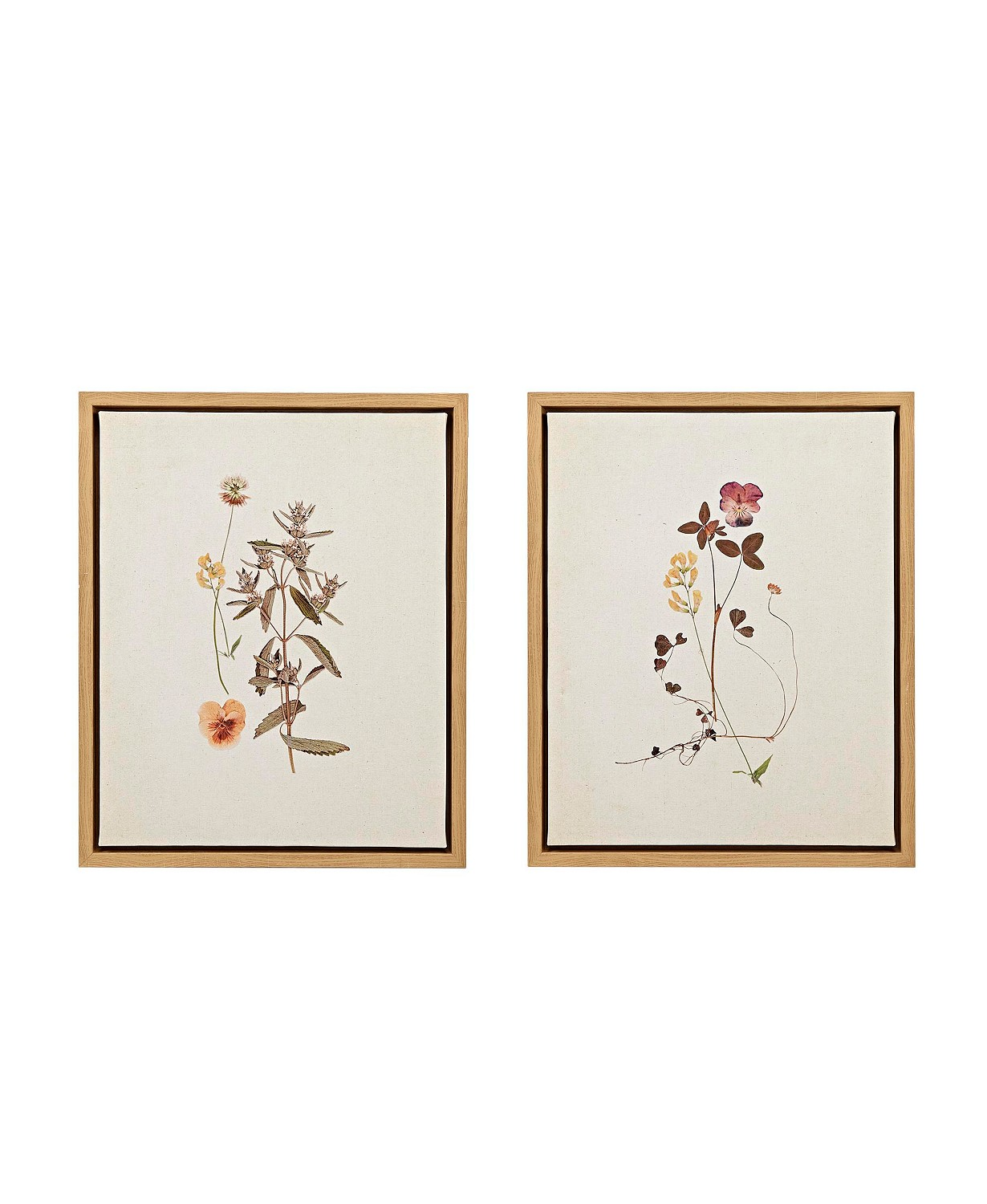 Linen French herbarium set of framed prints