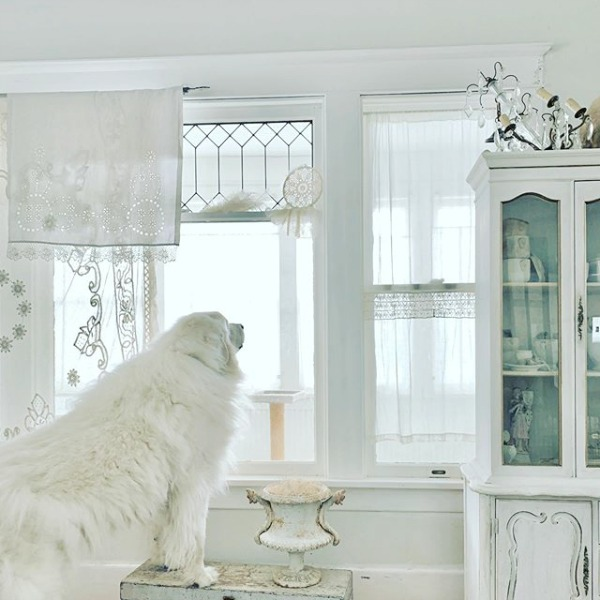 Gentle white on white decor scheme in a Nordic French interior by My Petite Maison.  Come see White & Rustic Country Interiors: 19 Ideas to Add Whimsy. #whitedecor #toneontone #swedishdecor #nordicfrench #whitecountrydecor #interiordesign