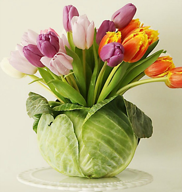 Darling cabbage turned vase with spring tulips for a tcolorful easy DIY able centerpiece by Darling Darleen. #springcenterpiece #tulipcenterpiece #springdiy #springcraft