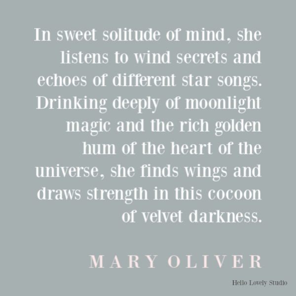 Mary Oliver poetry poem about connecting with nature and spring blissfully - Hello Lovely Studio. #maryoliver #poetry #poems #springpoem #nightpoem #naturepoem