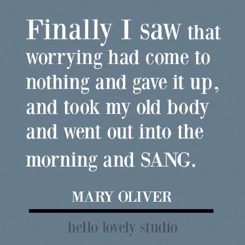 Mary Oliver quote on Hello Lovely Studio to encourage and uplift. #maryoliver #encouragementquote #naturequotes #poetry