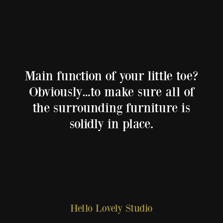 Funny humor quote about function of little toe - Hello Lovely Studio. #funnyquotes #humorquotes #lifequotes