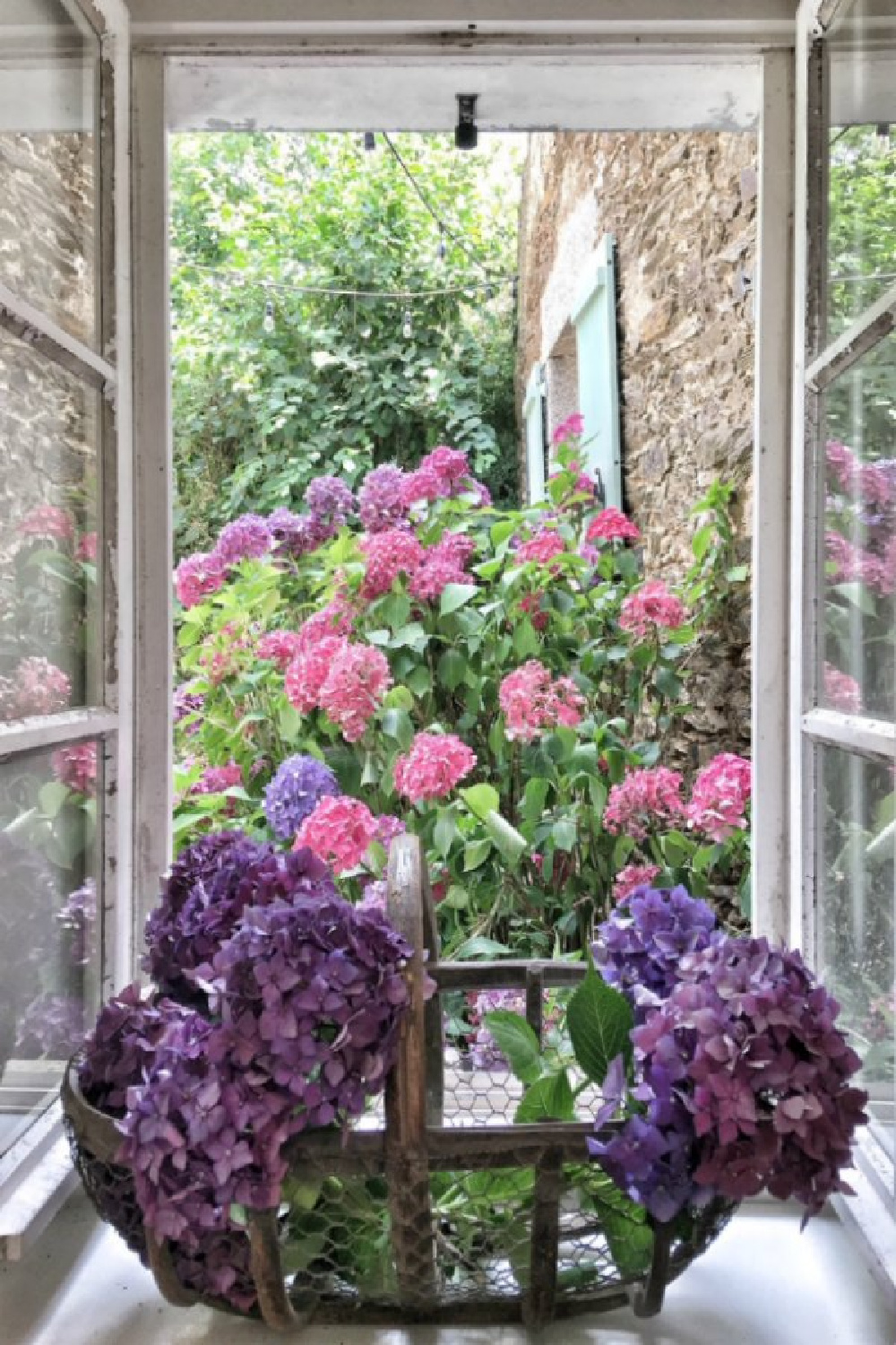 French oysterbasket filled with hydrangea in a charming kitchen window.French farmhouse design inspiration with an interview with Vivi et Margot. Come be inspired on Hello Lovely and learn the paint colors used in these beautiful authentic French country interiors. #oysterbasket #frenchkitchen #frenchfarmhouse  #frenchcountry #vivietmargot #rusticdecor #frenchhome #authentic #frenchmarket #summerliving #europeanfarmhouse