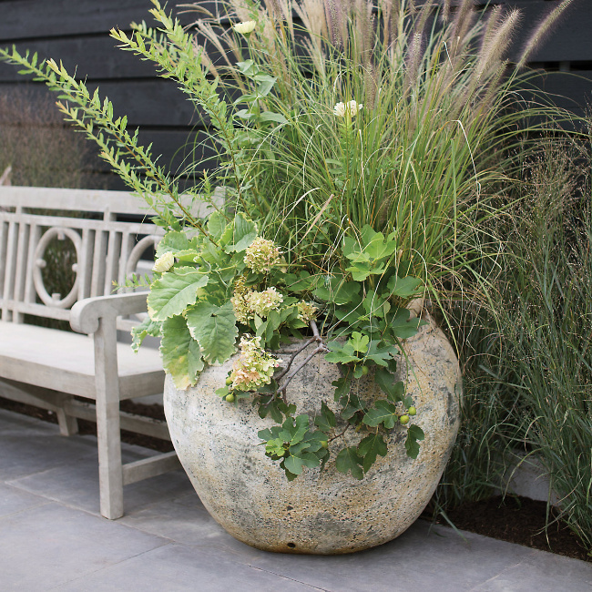 Barnacle Round Shoulder Pot - Terrain. Come visit 29 Lovely Feel Good Finds & Funny Quotes!