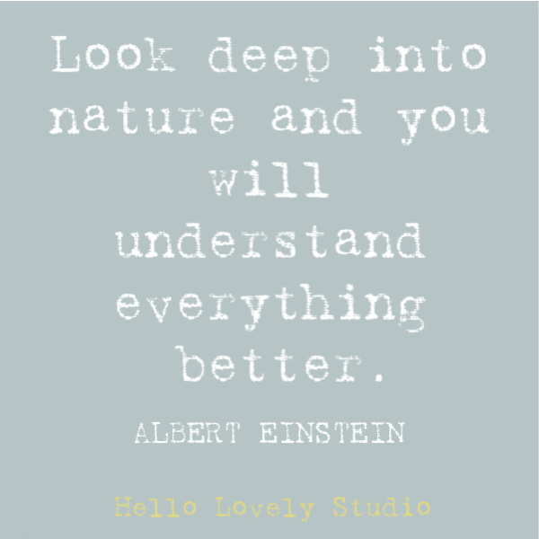 Hippie quote to inspire, disarm, uplift, and stir your heart on Hello Lovely Studio. This post features Airstream decor at Pottery Barn while it also offers glimpses of dreamily hitting the open road. #hippiequote #inspirationalquote #quotes #einstein