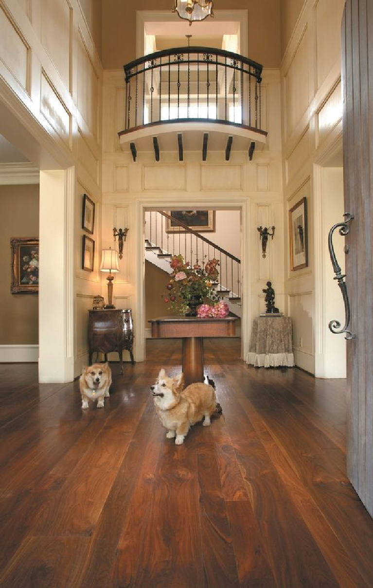 Happy corgis stand on chocolate walnut floors in a traditional entry of a grand home - Carlisle Wide Plank Flooring. #flooring #walnut #darkbrownfloors #hardwoodfloor #carlisle #wideplankfloors