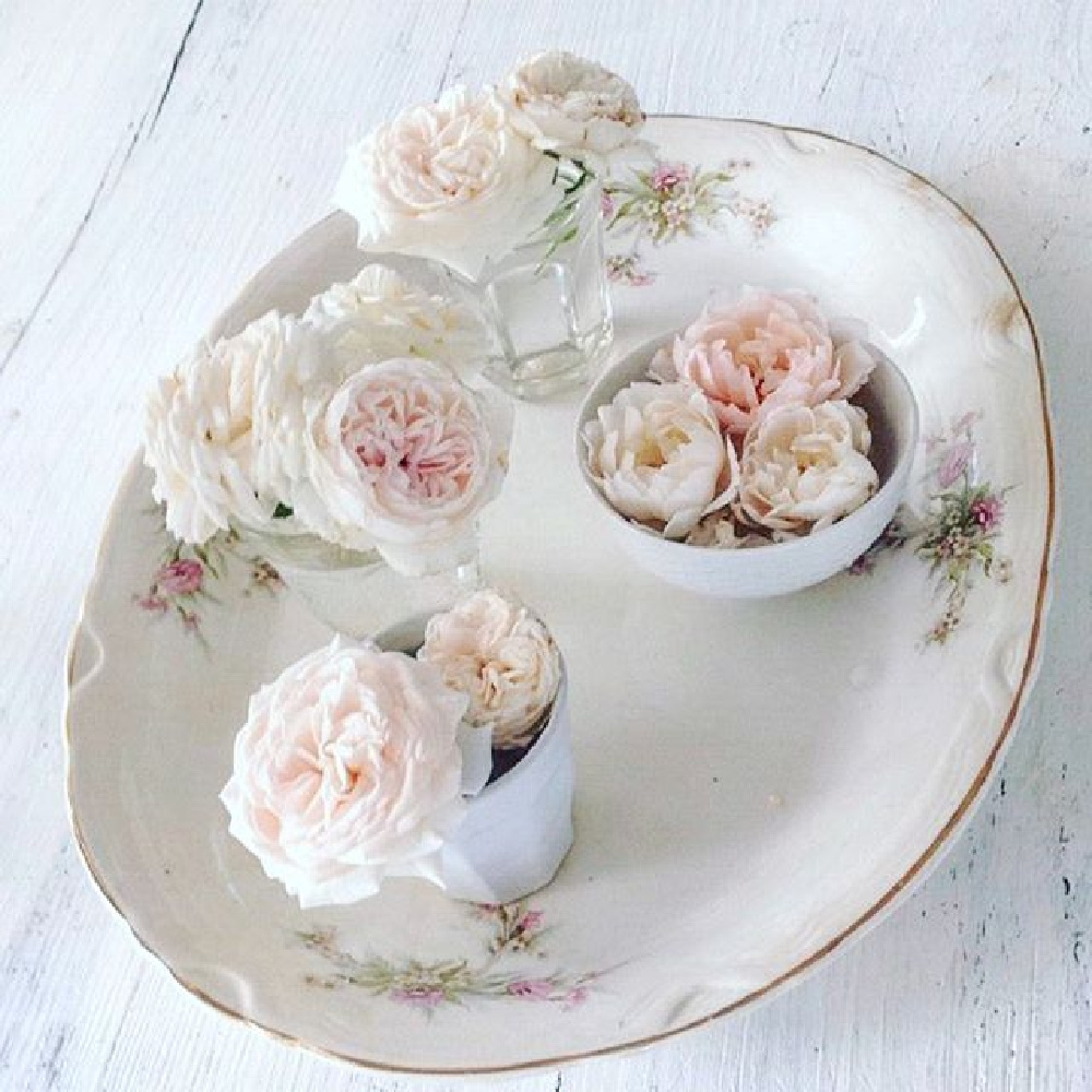 Pink garden roses upon a vintage floral china platter and white farm table - My Petite Maison.
