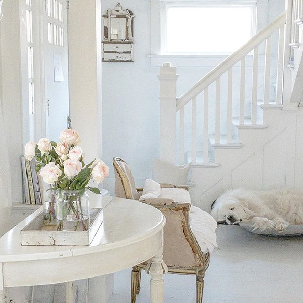 All white interiors, antique demilune table, and white painted hardwood flooring in a cottage (with Great White Pyrenees dozing!) by My Petite Maison.