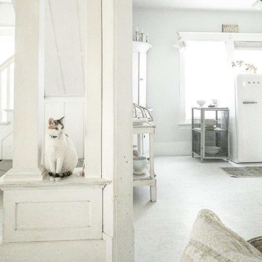 Sweet kitty perched in a Scandi style all white cottage by My Petite Maison.