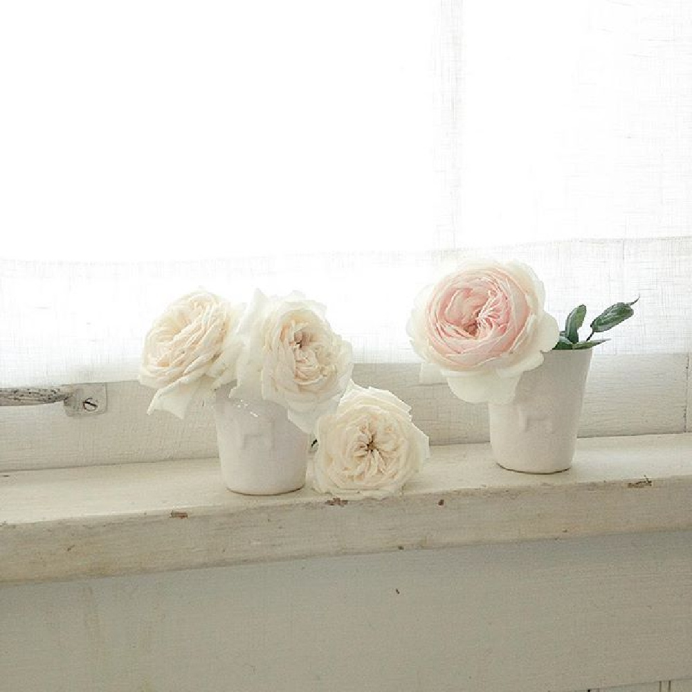 Blush pink garden roses on a weathered white window sill - My Petite Maison.