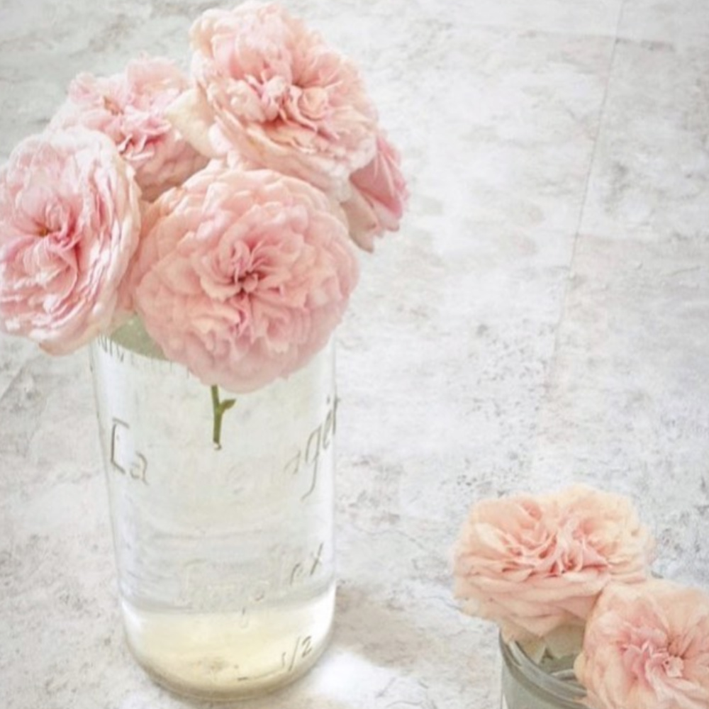 Pink garden roses in a vintage French canning jar in a French Nordic vignette by @mypetitemaison.
