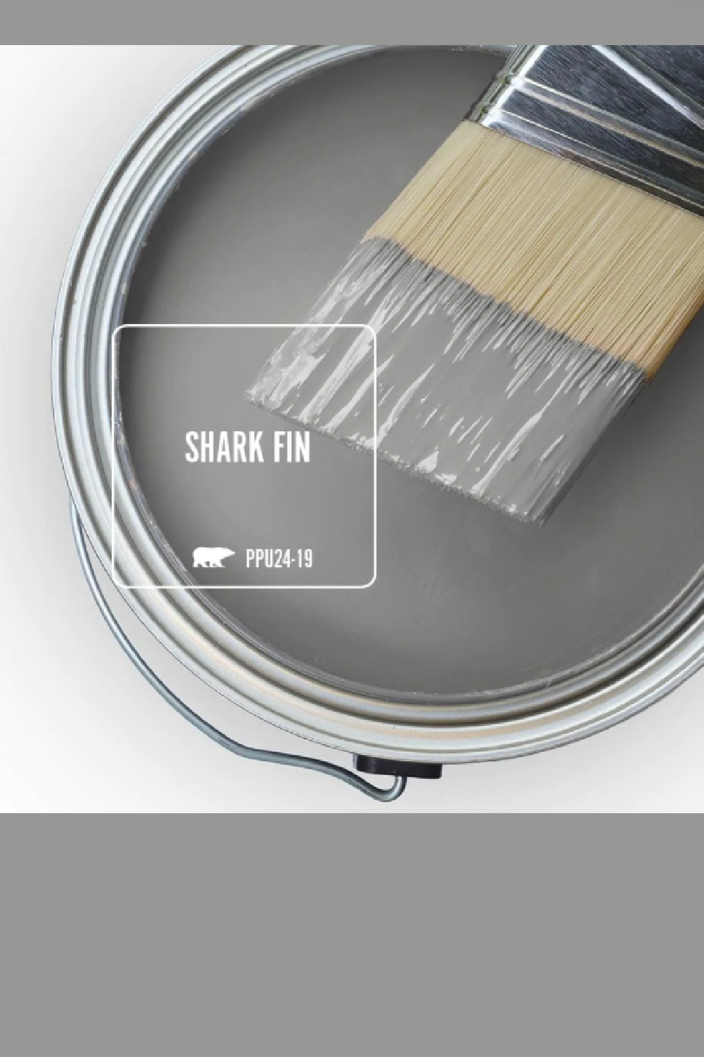 Shark Fin (Behr) gray paint color swatch. #sharkfin #paintcolors #behrsharkfin #graypaintcolor