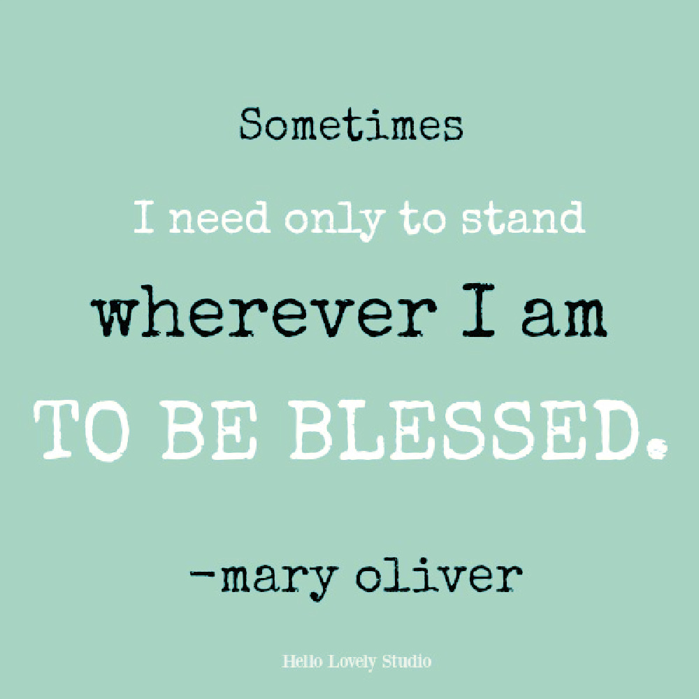 Mary Oliver quote on Hello Lovely. #maryoliver #inspirationalquote #blessingquote #naturequotes