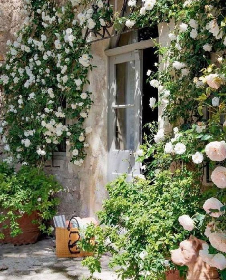 Pale pink roses climbing a stone wall of a home in Provence. #frenchfarmhouse #roses #gardeninspiration