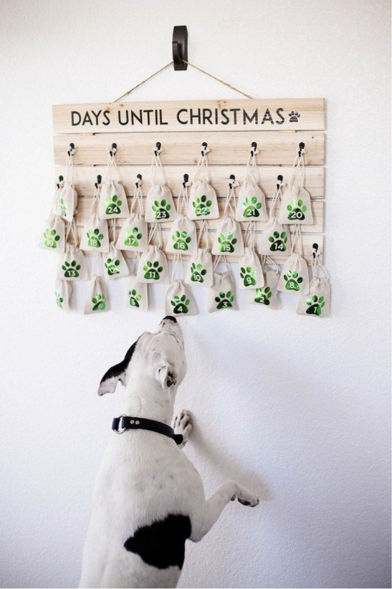 Darling pup friendly advent calendar holiday decor idea from All the Memories. #christmasdecor #christmasdiy #pets #christmasdogs #adventcalendars #christmascountdown