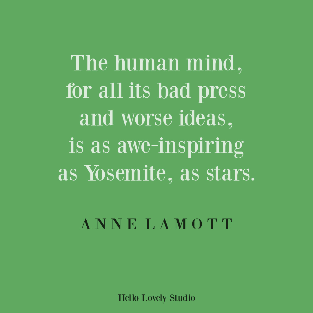 Anne Lamott quote about the human mind on Hello Lovely. #annelamottquotes #mindquotes #creativityquotes
