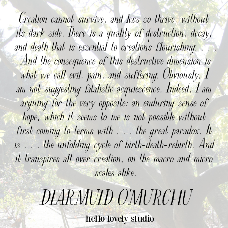 Inspirational quote from Diarmuid Omurchu on paradox - Hello Lovely Studio. #inspirationalquotes #faithquotes #pandemic #spiritualityquotes