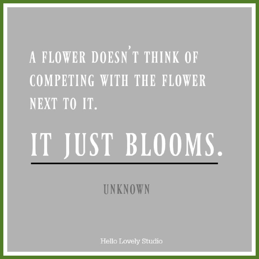 Inspiring quote about competition and comparison. A FLOWER DOESN'T THINK OF COMPETING WITH THE FLOWER NEXT TO IT. IT JUST BLOOMS. #hellolovelystudio #quote #comparison #flowers